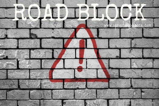 Road Block Ahead: Finding Calm Instead of Road Rage - www.sproutingbalance.com - #calm #driving
