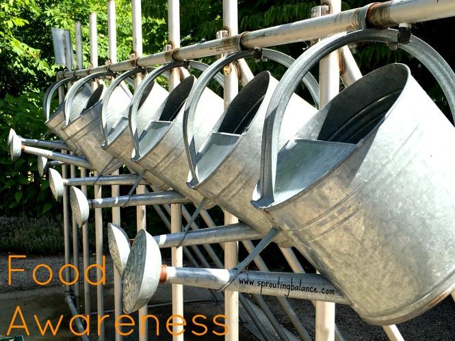 Food Awareness - www.sproutingbalance.com - #children #food #gardening