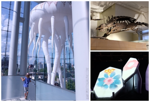 Every Summer has a Story: 2018 Ottawa - Museum of Nature | www.sproutingbalance.com | #Ottawa #Museum #Nature #trip