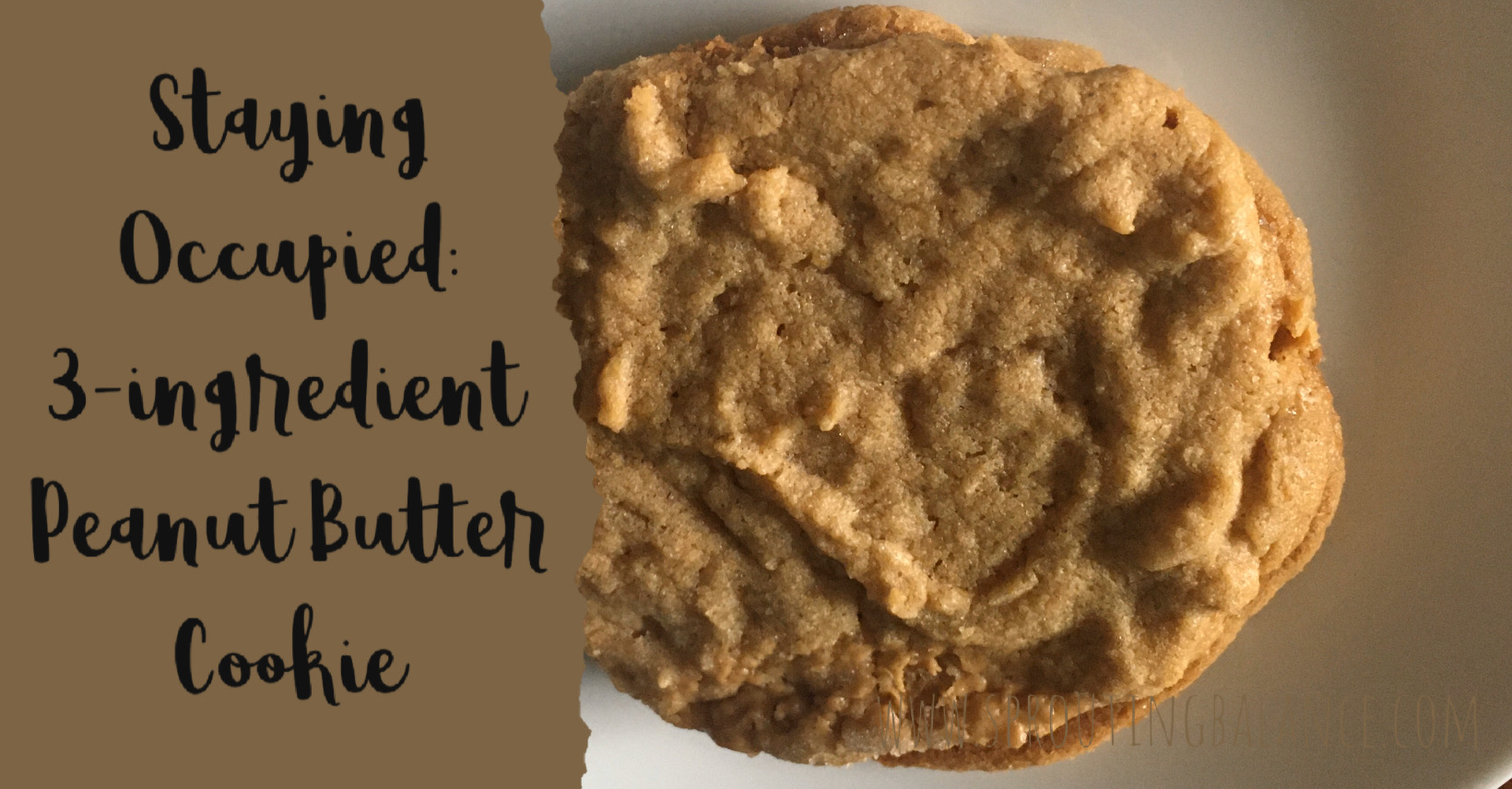 Staying Occupied: 3-ingredient Peanut Butter Cookies | www.sproutingbalance.com | #stayhome #socialdistancing #bepositive